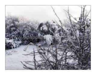 Magic Snow by Spappara