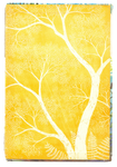 Paper texture 'yellow tree'   PNG