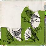 Green birds | PNG