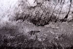 Storm Grunge Texture