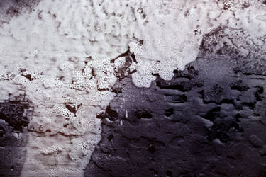 Foam-flecked wood Texture by mercurycode
