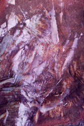Digital Art Texture 73 by mercurycode
