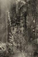 Digital Art Texture 138 by mercurycode