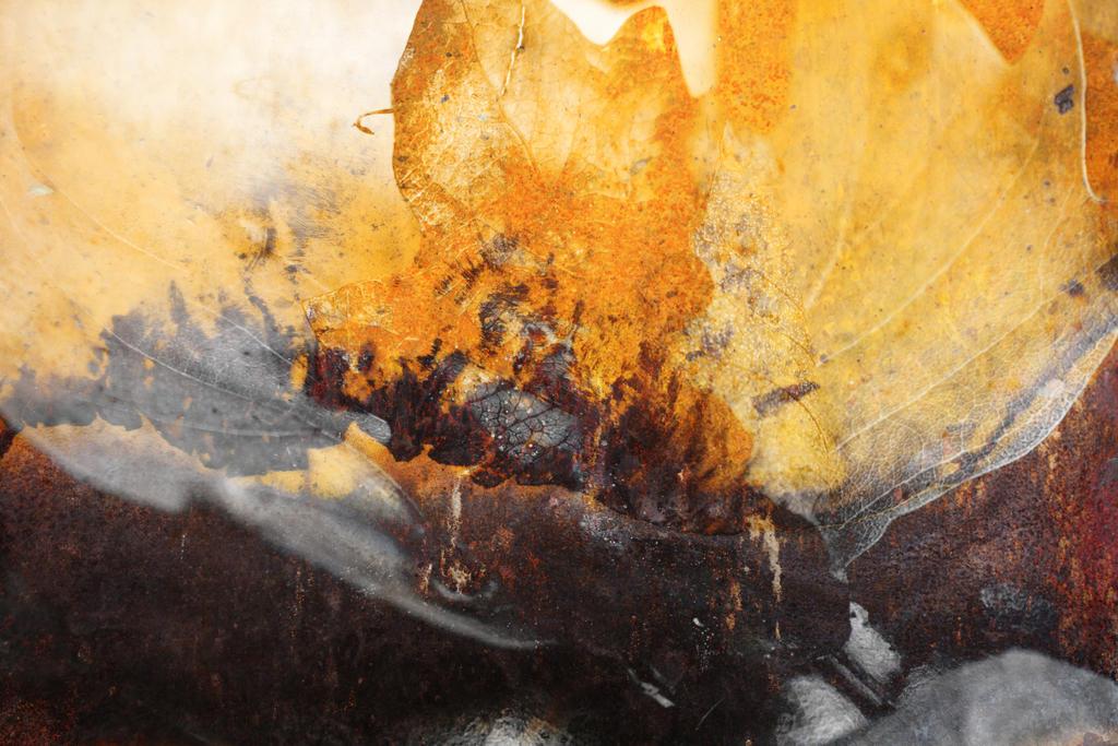 Digital Art Texture 198 by mercurycode