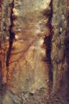 Digital Art Texture 224