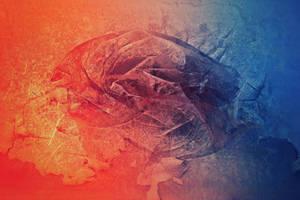 Digital Texture Artwork / Scrap / Orca