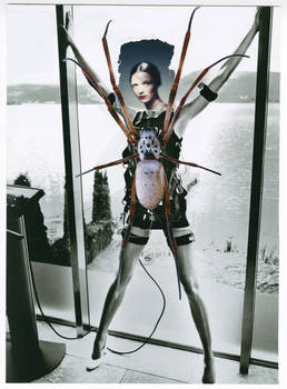 Original Collage: Arachnid Apparatus