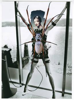 Original Collage: Arachnid Apparatus