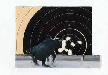 Original Collage: Bull's Eye by mercurycode