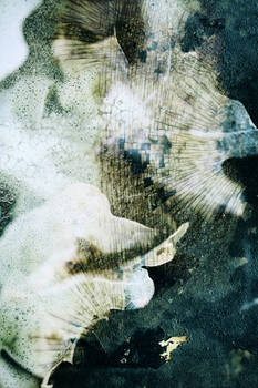Digital Texture Artwork 365