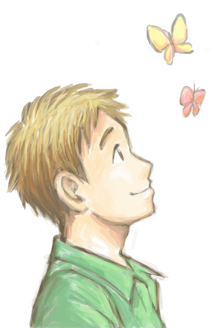 Butterflies by cocon