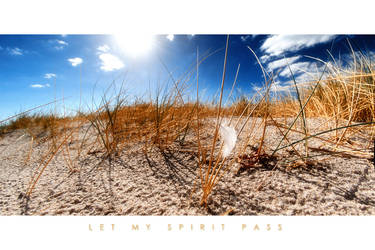 Let my spirit pass