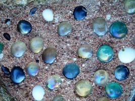 DS: Text: Fairy Pebbles