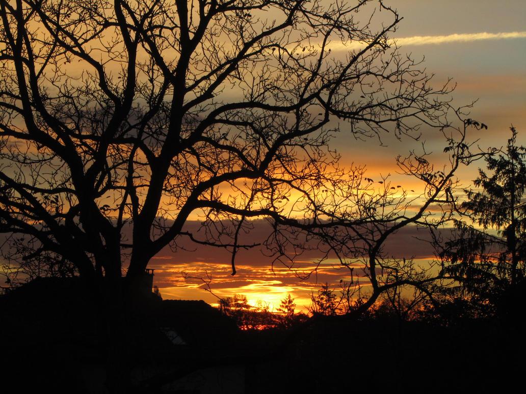 Sunrise by Santian69