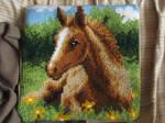 Foal cushion