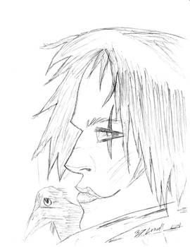 Quick Crow Sketch