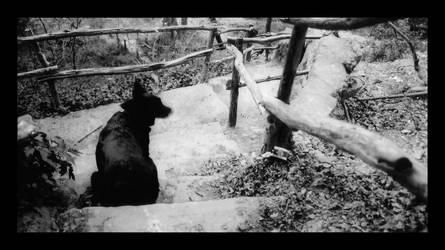 The Path Ahead by keglunekdoq