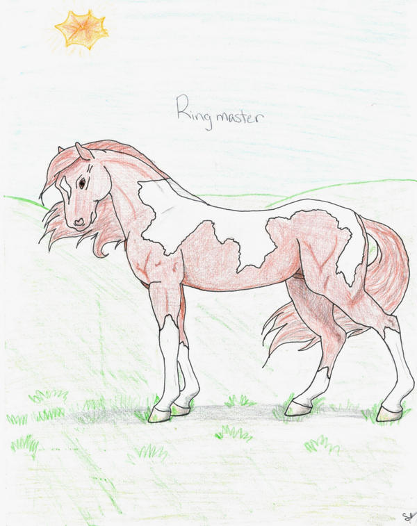 Breyer horse ringmaster by azzeys blizzy days on deviantart for Breyer horse coloring pages