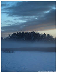 Hiding in the Mist by Snowyowl88