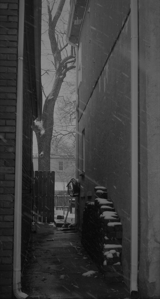 Snowy Walkway by Cheshire-Fox-01