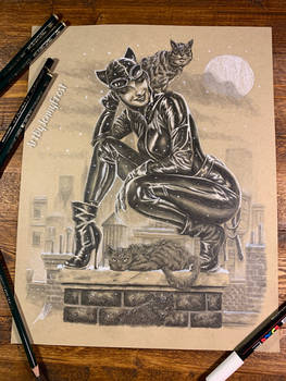 Rooftop Catwoman