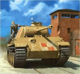 Panzerkampfwagen V Panther ''Pudel'' polish tank. by FutureWGworker