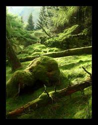 Lake District Woodland Greens