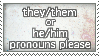 pronouns stamp - they/them he/him by remivalism