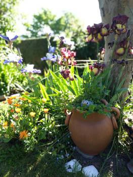 Au jardin mai 2019