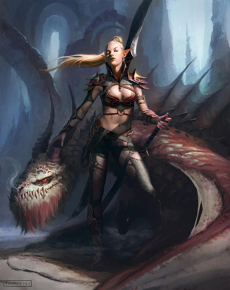 Elf and Dragon(s) by pindurski