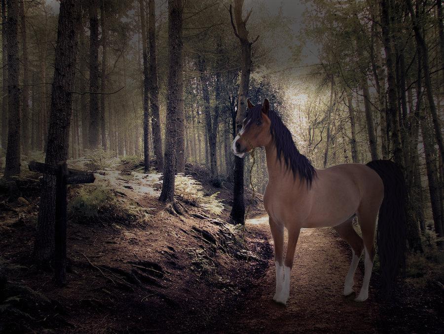 You Aren't Afraid of the Dark..... by RicochetRosie