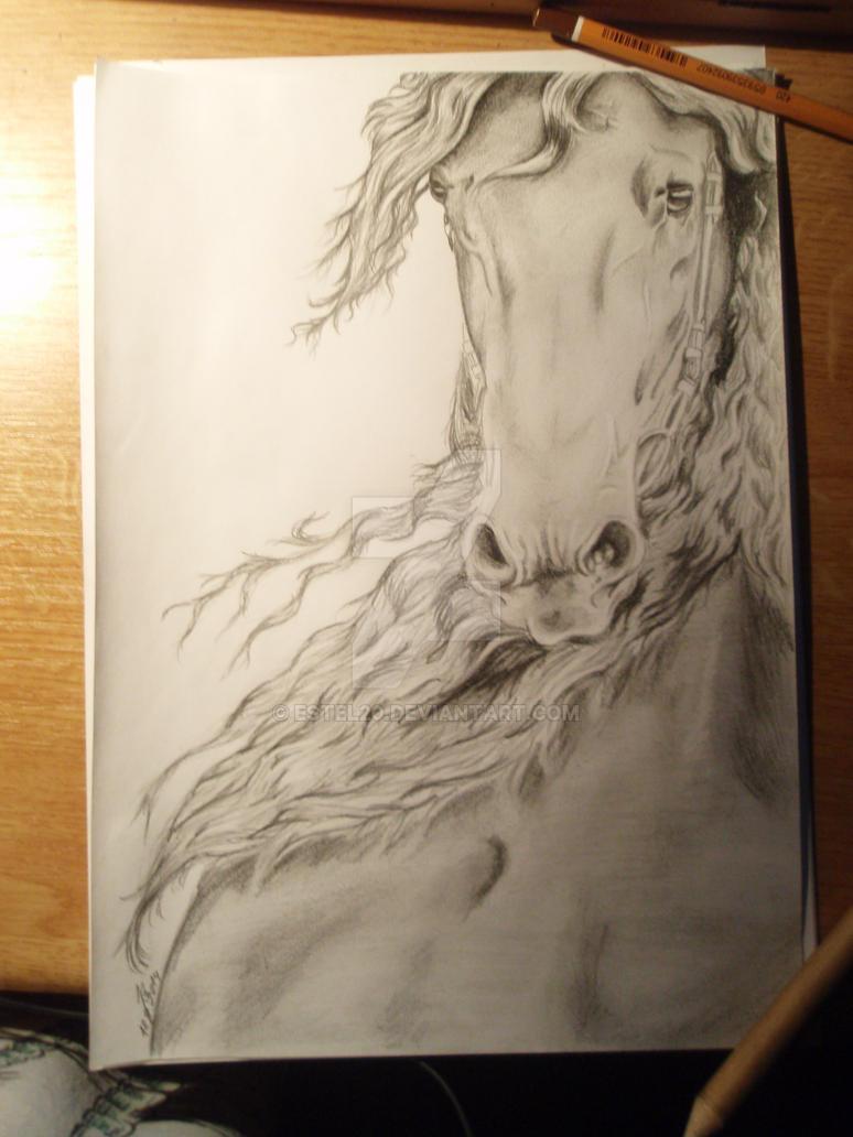 Horse by Estel20