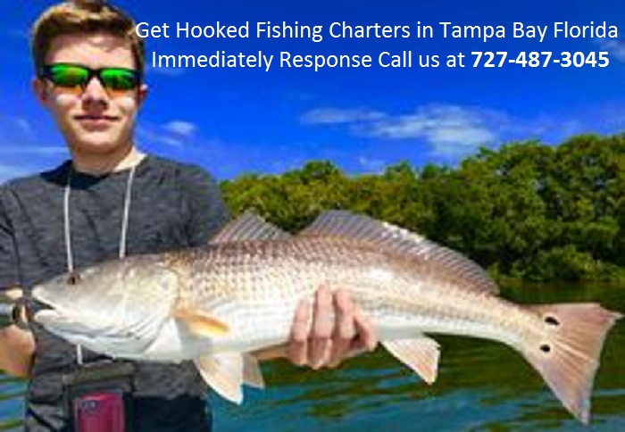 Captaindustinfl captain dustin hilliard deviantart for Fishing charters tampa