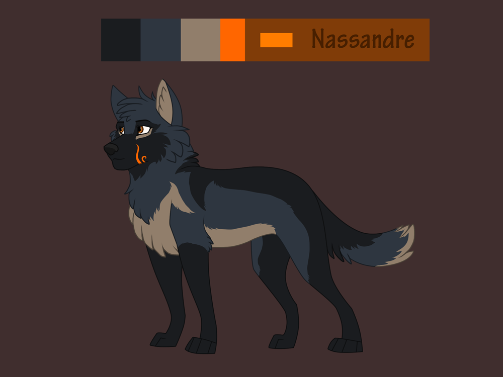Nassandre reference sheet by Sylean