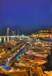Monaco Port by night