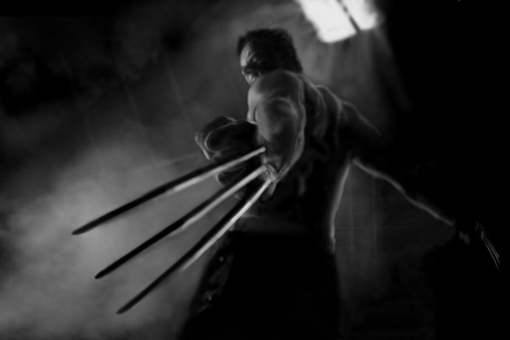 Wolverine by JCapela