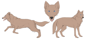 [c] Mexican Wolf Lines