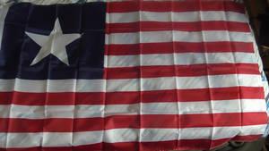 My Florida Provisional Flag/First Texas NavyEnsign