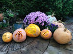 Boba Fett Haloween Pumpkins by MahiyanaCarudla