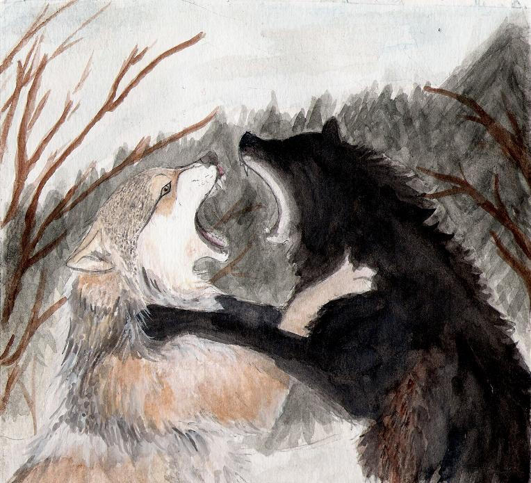 Fighting Wolves by Wol...