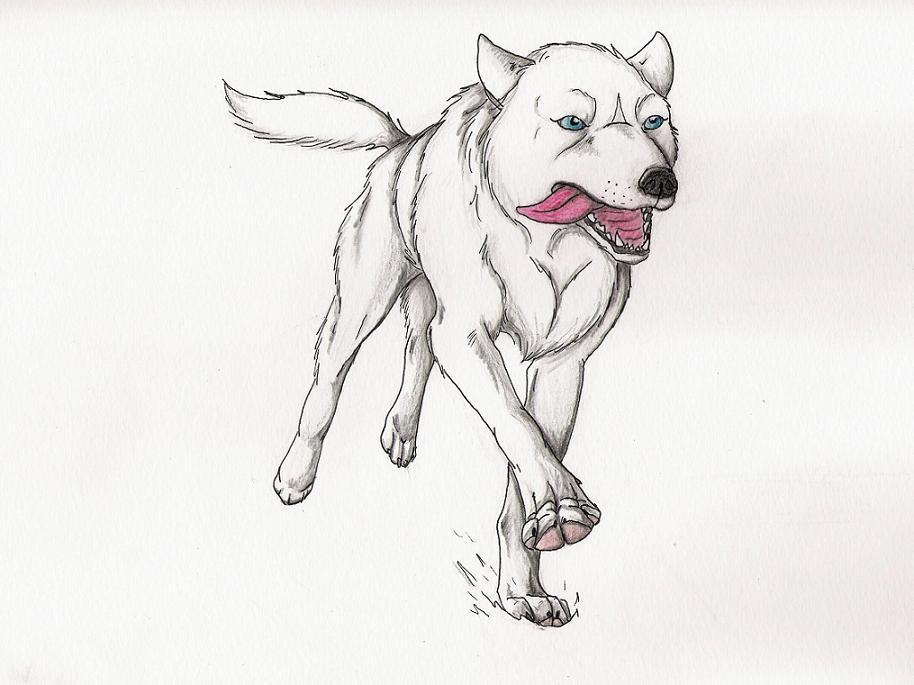WolfSoldier by WolfSoldier87