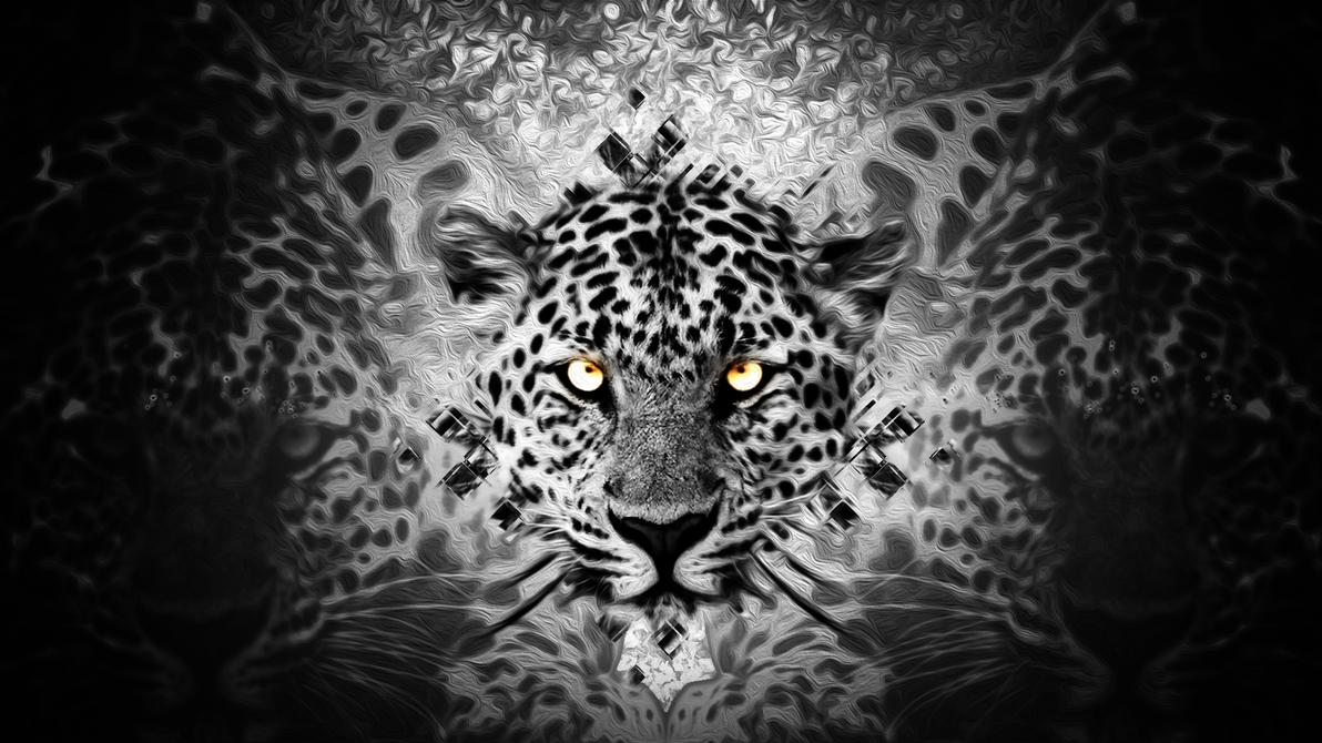 Tiger Wallpaper By RodaDesigns