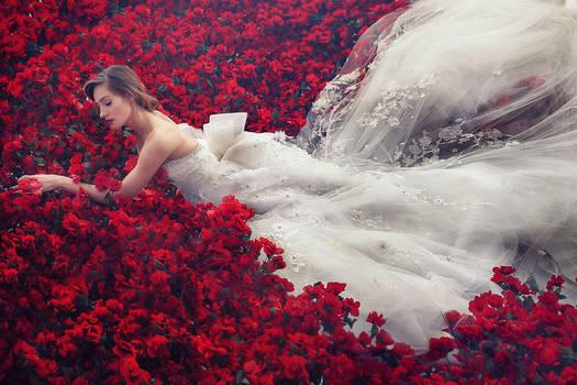 scarlet blessing 1