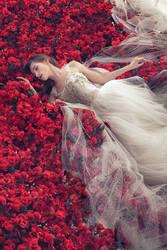 scarlet blessing 4