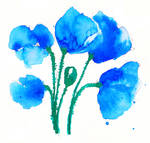 Blue Blue Poppies