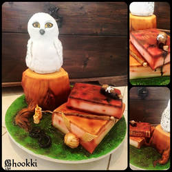 Cake Harry Potter by chookki