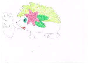 Shaymin for PinkieShy