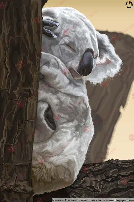 Koala by MauricioMassami