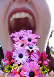 Vomiting Flowers