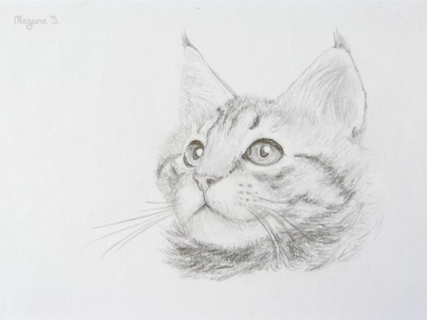 Drawmouse nouveaut p2 - Main dessin crayon ...
